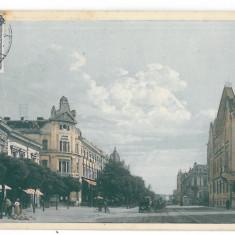 4570 - TIMISOARA, Market, Romania - old postcard - used - 1913 - TCV, Circulata, Printata