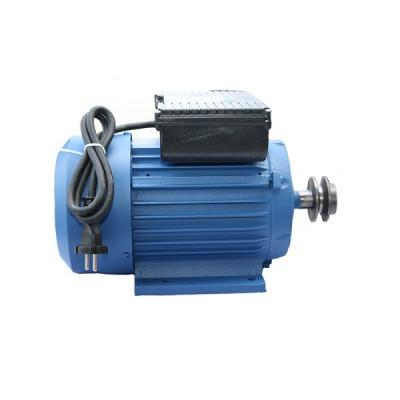 Motor electric monofazat 2.2 kW 1500 RPM Micul Fermier foto