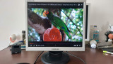 "Monitor LCD Samsung 720N , 17"" Functioneaza ."