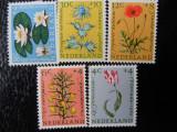 Serie timbre flora flori plante Olanda nestampilate timbre filatelice postale, Nestampilat