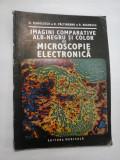 Imagini camparative alb-negru si color de microscopie electronica - N. Manolescu, D. Paltineanu, R. Begnescu