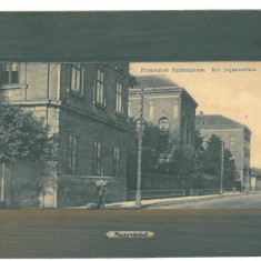 4809 - ORADEA, High School, Romania - old postcard - unused