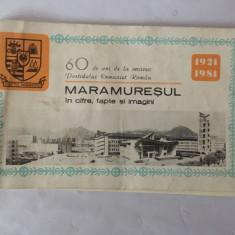 60 de ani de la crearea Partidului Comunist Roman, Maramuresul in cifre, fapte