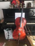 vand violoncel