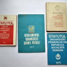 Statutul Organizatiei Pionierilor, UTC, Regulamentul Organizatiei Soimii Patriei