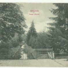 Valcele(Covasna) 1915 - paraul
