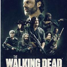 Film Serial The Walking Dead DVD BoxSet Seasons 1-9