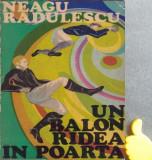 Un balon radea in poarta Neagu Radulescu