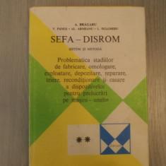 Sefa-disrom, sistem si metoda – A. Bragaru, V. Panus, Al. Armeanu, L. Dulgheru