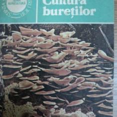 CULTURA BURETILOR- NICOLAE MATEESCU, BUC.1985