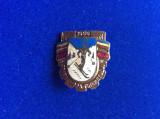 Insignă sportivă - Insignă România - Spartachiada tineretului 1956 - Schi
