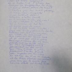 MARGARETA STERIAN, TRADUCERE IN LIMBA FRANCEZA DUPA O POEZIE DE VASILE NICOLESCU