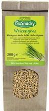 Seminte de Iarba de Grau pentru Germinat Bio 200gr Rapunzel Cod: 690680