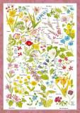 Puzzle Schmidt - 1000 de piese - COUNTRYSIDE ART: WILD FLOWERS