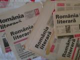 5 Ziare Romania literara
