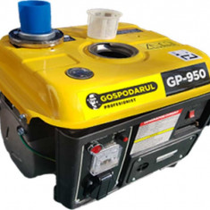 Generator Gospodarul Profesionist 900 W