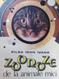 ZOONOZE DE LA ANIMALELE MICI - FILEA IVAN IOANA