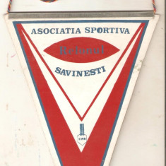 Fanion Relonul Savinesti + insigna