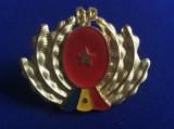 Insignă Gărzi Patriotice - Insignă România - Gărzi Patriotice - GP - 1970