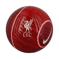 Minge Nike FC Liverpool Strike - DC2377-677