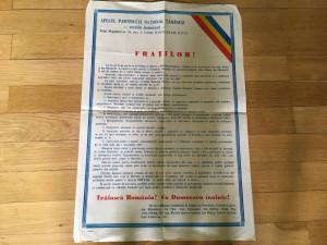 Afiș - Apel PNȚcd - ianuarie 1990 - foarte rar