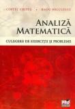 Analiza matematică. Culegere de exerciții și probleme