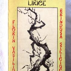 """INTERFERENTE LIRICE. Constelatia Haiku"", Florin Vasiliu, Brindusa Steiciuc,1989"