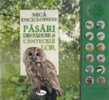 Mica enciclopedie: Pasari din padure si cantecele lor, Aramis