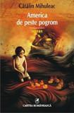 America de peste pogrom/Catalin Mihuleac, cartea romaneasca