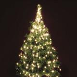 Ghirlanda luminoasa, microLED-uri alb cald, cablu alama, interior/exterior