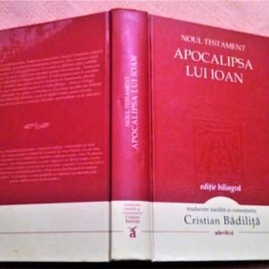 Noul Testament. Apocalipsa Lui Ioan. Editie bilingva - Cristian Badilita (trad)
