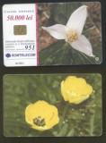 Romania 2001 Telephone card Flowers Rom 118 CT.067
