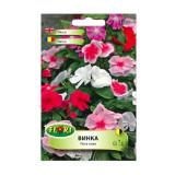 Seminte flori Florian Vinca rosea multicolor