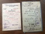 Document interbelic ce prezinta viza Comisariatului de Politie Resita