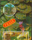 CPIB 15410 - CARTE POSTALA - BAILE FELIX. MOZAIC