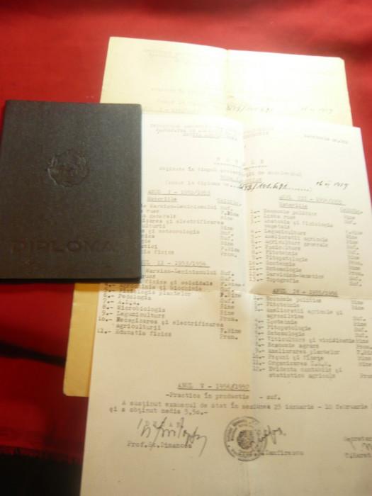 Diploma de Inginer in Agriculturasi Anexe Zootehnie 1958 Inst.Agr.N.Balcescu Buc