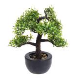 Cumpara ieftin Bonsai Artificial decorativ, in ghiveci negru, cu frunza verde deschis, aspect natural, Rezistent la umiditate, pentru interior sau exterior, 31cm