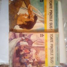 Toate panzele sus! Vol 1-2, Radu Tudoran