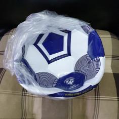 Minge de fotbal Timisoreana
