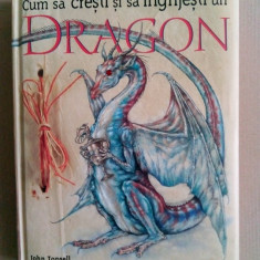 JOHN TOPSELL - CUM SA CRESTI SI SA INGRIJESTI UN DRAGON (RAO, 2007, 128 p.)