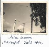 A1219 Avion sovietic deasupra orasului Mariupol Crimeea 1942 frontul de est