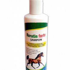 Sampon Keratin Forte Pasteur 200ml Set 1 + 1