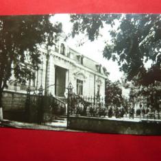 Ilustrata Tulcea - Muzeul Deltei Dunarii , anii '60