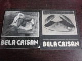 2 CATALOAGE EXPOZITIE , BELA CRISAN