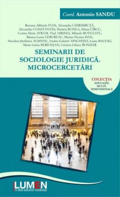 Seminarii de sociologie juridică. Microcercetări - Antonio SANDU (coord.) foto