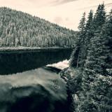 CD Negura Bunget - Tau (NOU Sigilat)