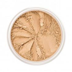 Pudra Pulbere Iluminatoare VOLLARE Loose Highlighter Powder Perfect Shine Gold 5 g