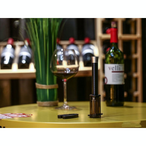 Set Deschizator Sticle de Vin Remax Elegance Air Pump