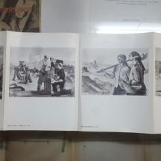 H. Catargi, Pliant, 7 ilustrații alb-negru