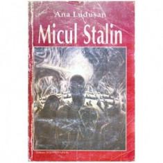 Micul Stalin